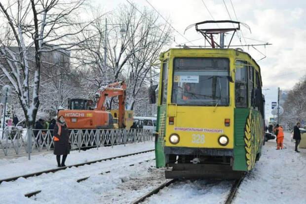Трамвайный маршрут №0 в Краснодаре будет бесплатным