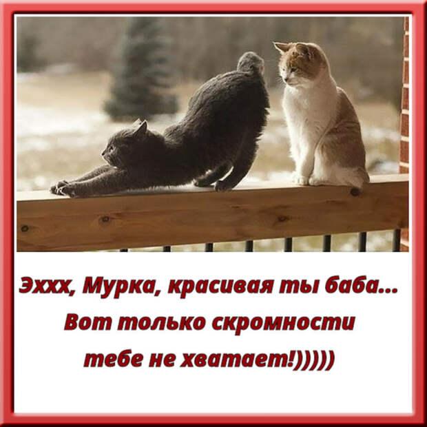 Муж сказал жене: «Худей или я уйду к другой...»...