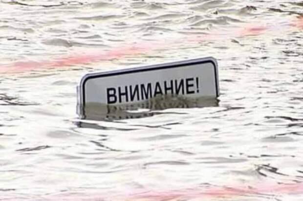 45 садовых участков затоплено паводком в Новосибирской области