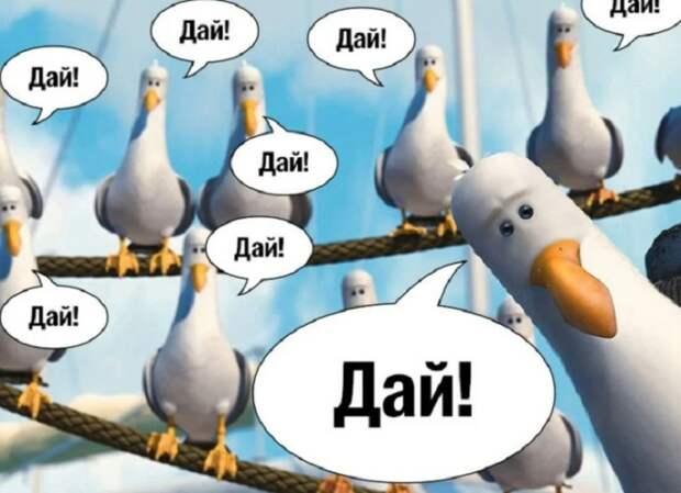 Избегайте подобных реалий. / Фото: zen.yandex.ru