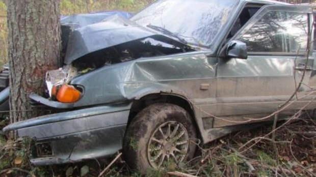 Подросток спровоцировал смертельную аварию с пятью погибшими на трассе под Ростовом