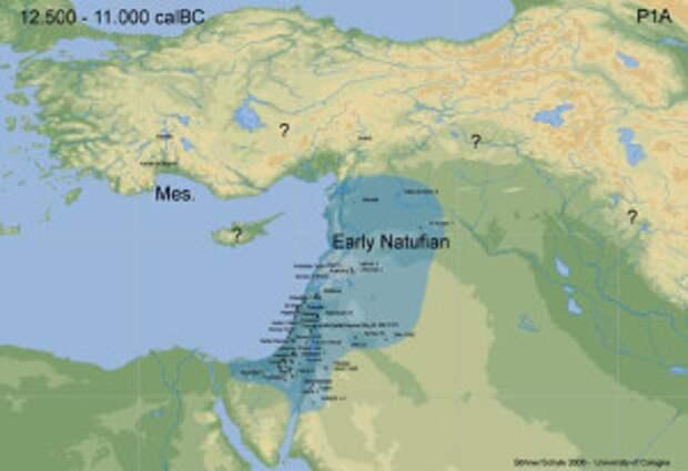 Натуфийская культура