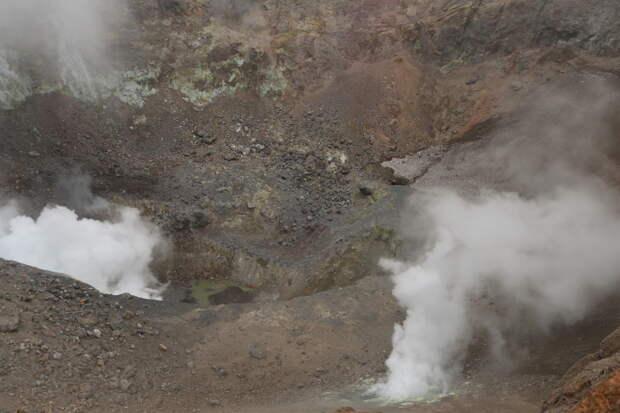 Камчатка. Часть 2. Медведи на планете вулканов.