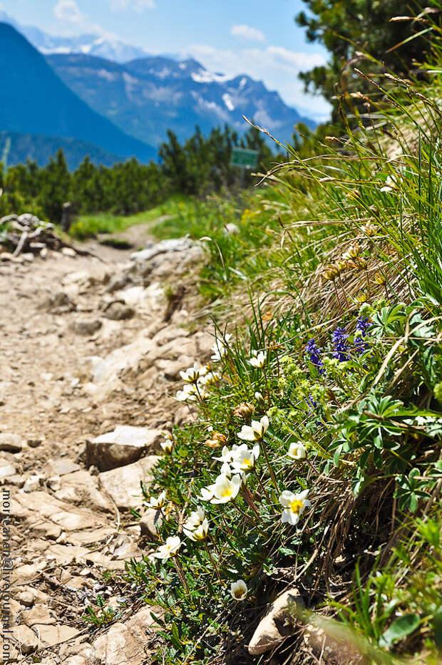 Горы, как средство от атеизма