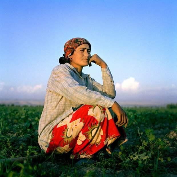 Основной труд, которым заняты женщины в поселках - аграрный жизнь простых людей, миграция, таджикистан