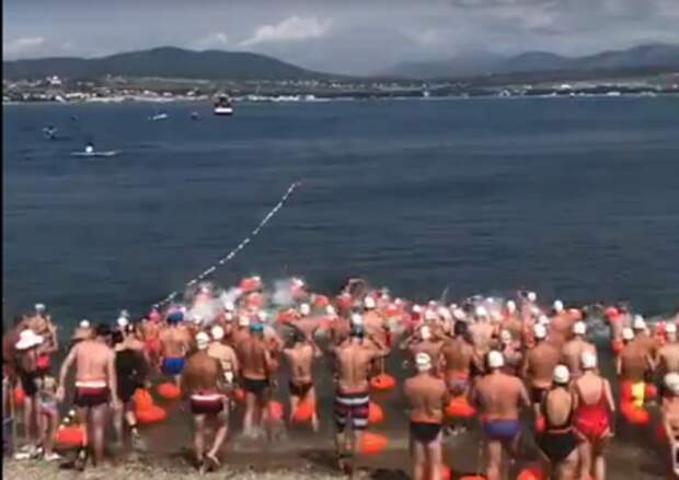 В Геленджике не будет массового заплывы «Морская миля»