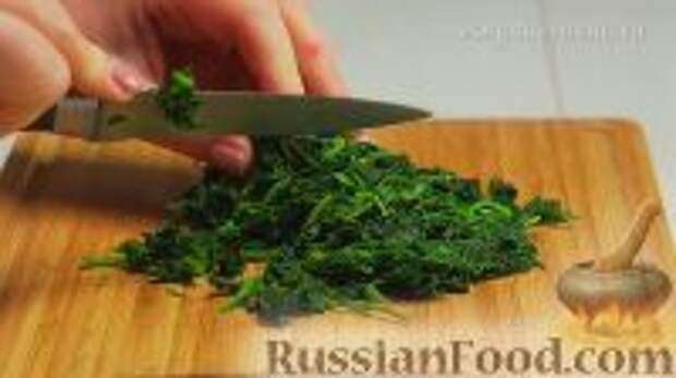 Фото приготовления рецепта: Ботвинья - шаг №15