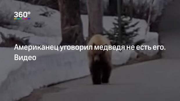 Американец уговорил медведя не есть его. Видео