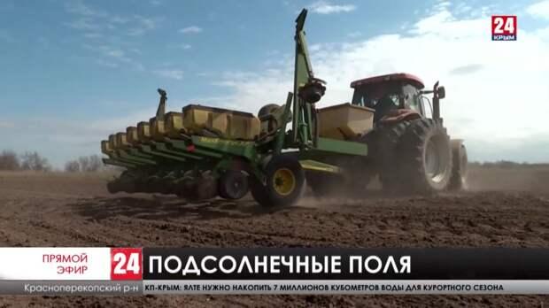 Посевная кампания на Севере Крыма вышла на финишную прямую
