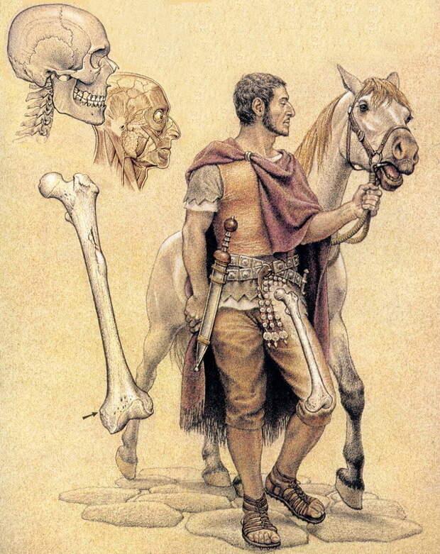 Реконструкция облика римского солдата из Помпей - Медицинская карта римского солдата | Warspot.ru