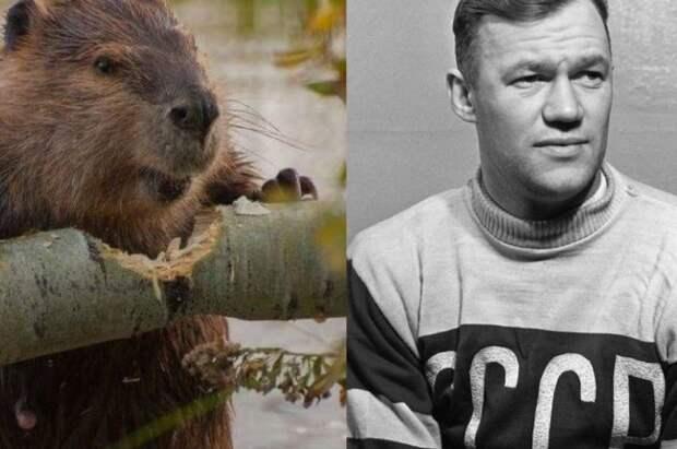 Интересные прозвища советских футболистов