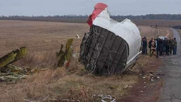 Кейс ван дер Пейл рассказал о подозрительном уходе прокурора в деле MH17