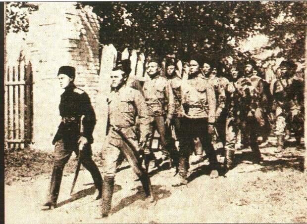 Августовское контрнаступление Южного фронта