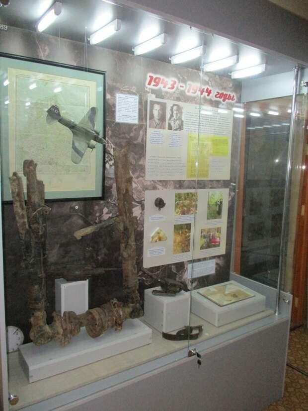 В Краеведческом музее Андреаполя представили витрину, посвященную Ил-4