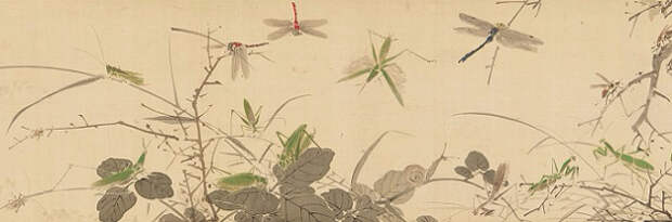 Insects and Grasses (631x209, 112Kb)