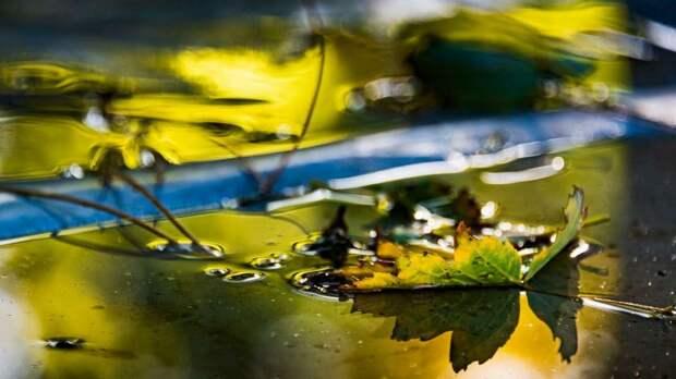 Мусор и осенняя листва: с чем воюют симферопольские дворники