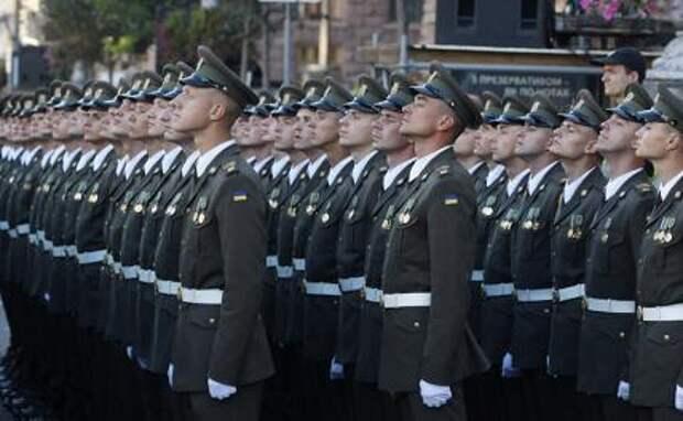 Хохол без лычки: Украинских прапорщиков повысили до warrant officers
