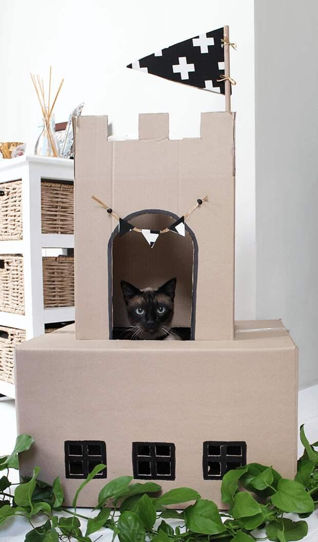 Замок для кота (Diy)