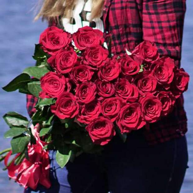 21-red-roses-freedom3-500x500