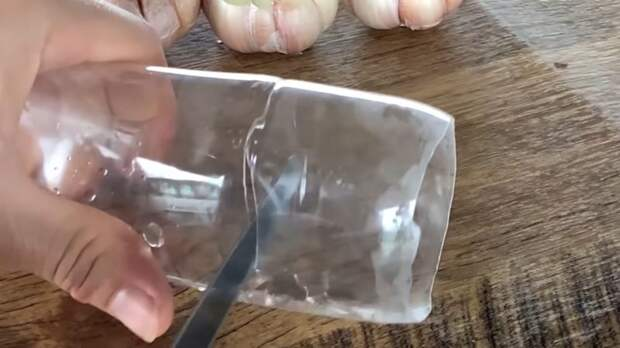 Элементарная хитрость с чесноком: нужна только вода и пластиковая бутылка