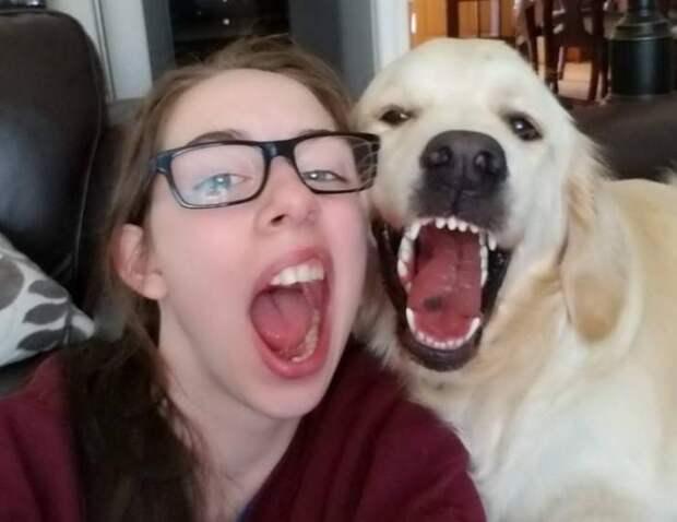 Подборка прикольных и забавных фотографий из сети для хорошего настроения