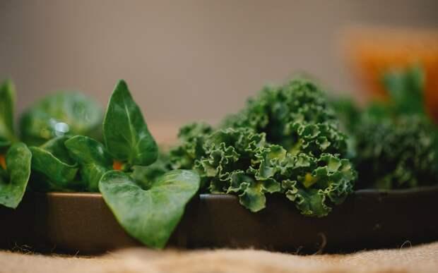 Ученые обнаружили, что листовые овощи снижают риск развития болезней сердца