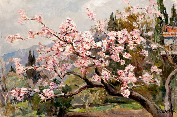 Весна в Крыму (657x436, 415Kb)