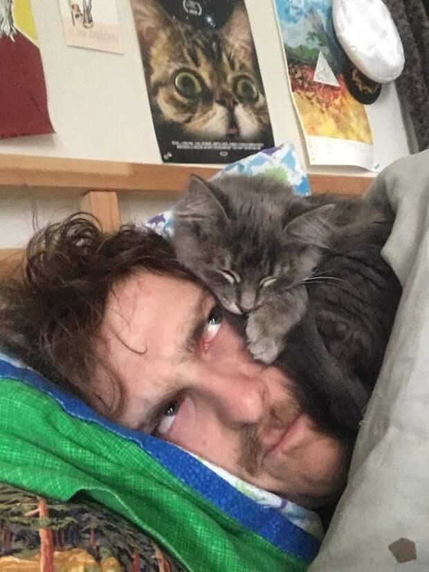 17 фото кошек, которые доказывают, что они не от мира сего