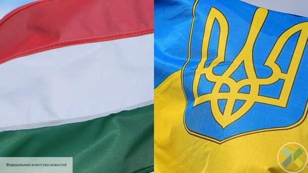 Бывший вице-премьер пристыдил Украину за скандал с Венгрией