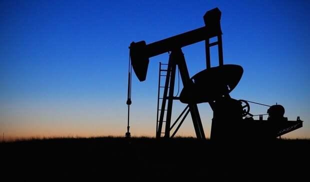 ВРоснедрах заявили онеисчерпанном потенциале открытия крупных месторождений нефти
