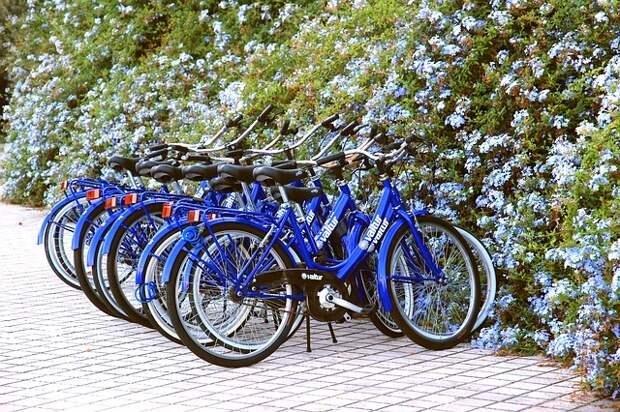 wheels-560751_640.jpg