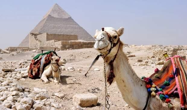 Россия восстанавливает авиасообщение с курортными городами Египта
