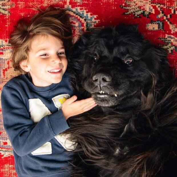 Фотогеничные Джулиан и гигантский ньюфаундленд Макс.