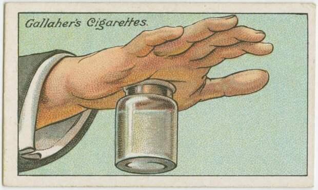 nazad-ispolzovavshihsya-hitrostey-eto-interesno-poznavatelno-kartinki