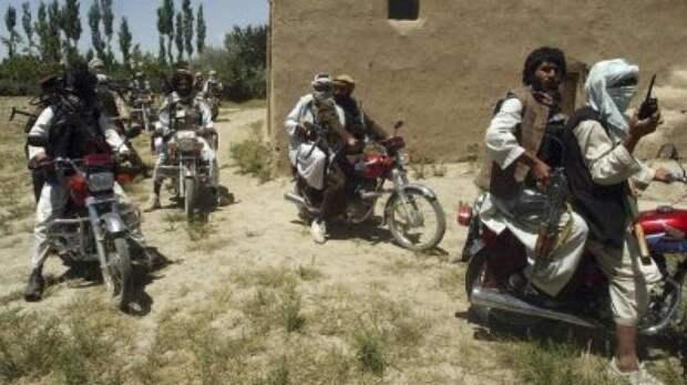 «Талибан»: террористическая банда или сверхсовременная военная машина?