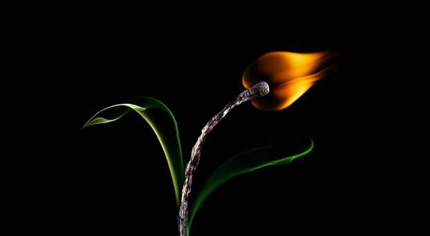 fire2best