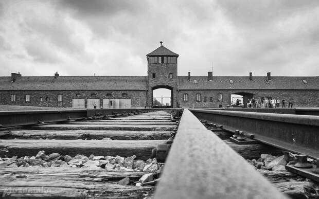Россия снова вынуждена осуждать нацистов в одиночку