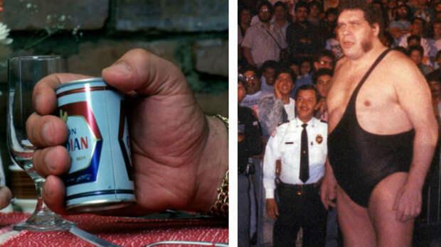 «Величайший пьяница наземле»: документальный фильм HBO обАндре Гиганте раскрывает печальные подробности оего жизни