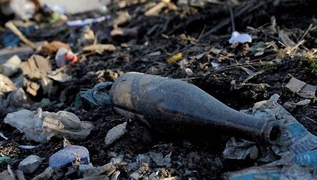 Собственника земли у Дубровицкого леса в Подольске обязали устранить свалку