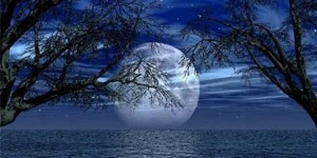 Секрет Луны и целлюлита