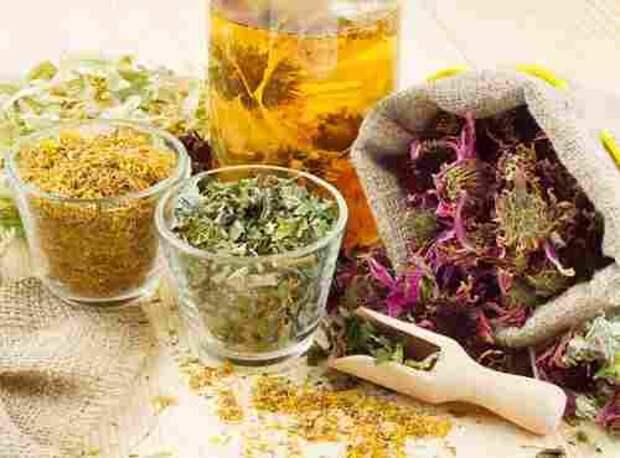 Какие народные лекарства нужны для лечения поджелудочной