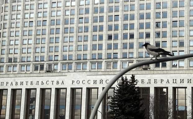 Чиновники решили выгнать ворон с крыши здания правительства России. На это потратят 42 миллиона рублей
