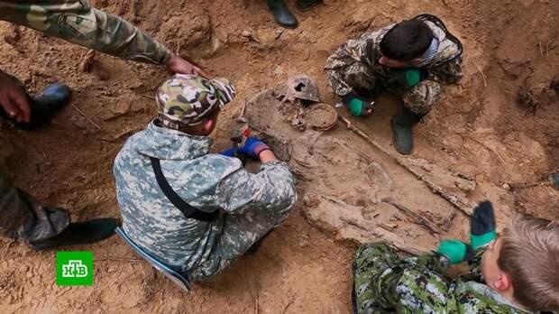 Школьники вместе с поисковиками находят останки погибших в годы ВОВ советских солдат