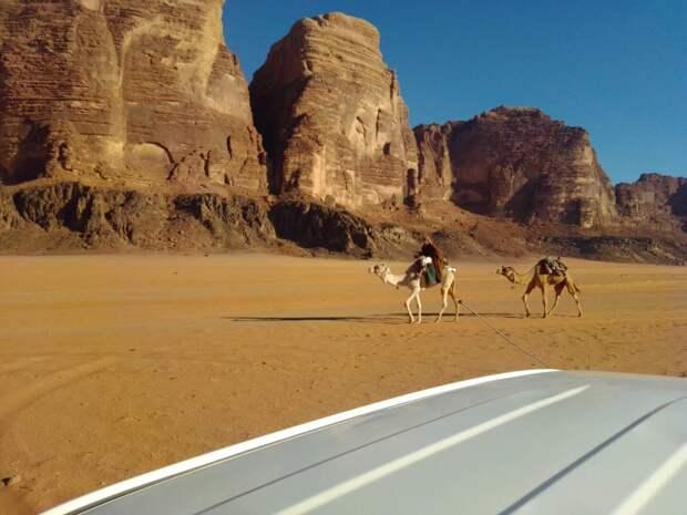 маленький караван в большой пустыне