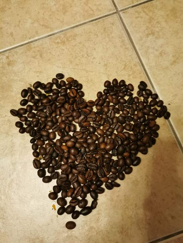 Знакомство с кофе