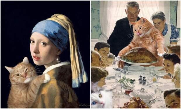 Заратустра – питерский кот, который стал частью шедевров мирового искусства