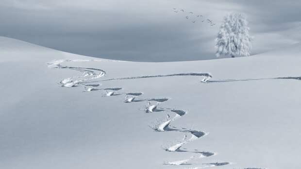 Вместо глобального потепления планету ждет малый ледниковый период, считает российский ученый