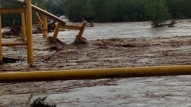 Наводнения на Западе Украины повлекли за собой ужасные последствия