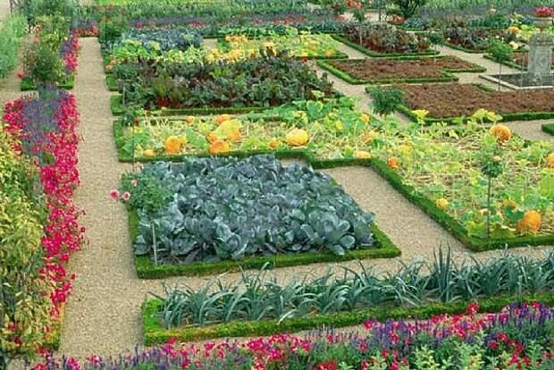 Простые идеи дизайна огорода