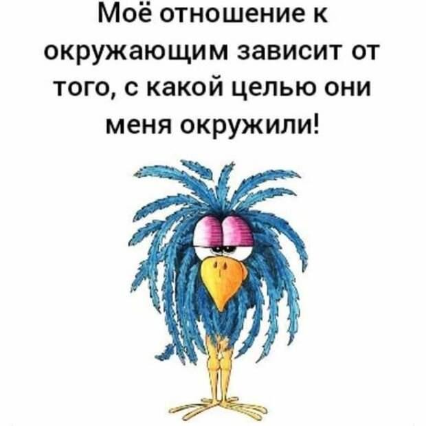 Возможно, это изображение (текст «моё отношение к окружающим зависит от того, c какой целью они меня окружили!»)
